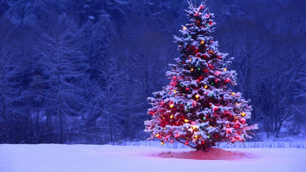 Alberi Di Natale Belli.Alberi Di Natale Piu Belli D Europa La Top 3 Di Bagexpress